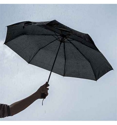 Black Umbrella, 42 in.